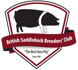 British Saddleback Breeders Club logo